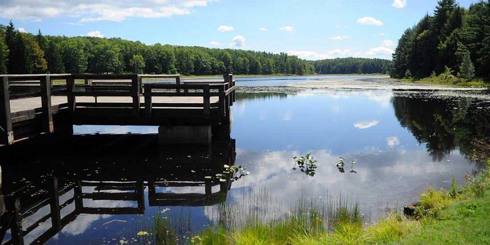 Black-Moshannon-State-Park-Fishing-Pier-1100-x-730