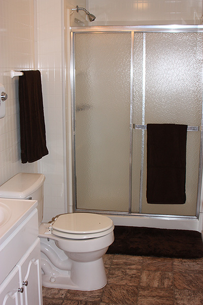 Black Moshannon Lodge Bathroom